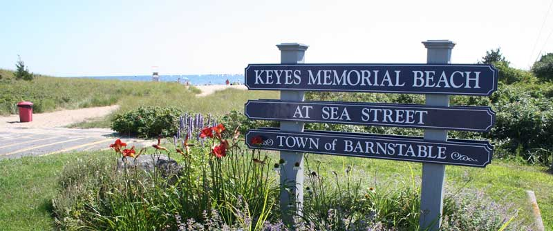 The Official Website of The Town of Barnstable